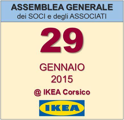 Assemblea Generale Assosvezia