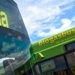 rassegna stampa svedese assosvezia biocombustibile verde efficacia energetica sostituzione petrolio