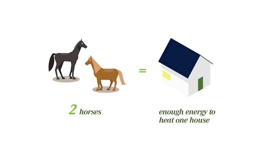 rassegna stampa svedese assosvezia fortum horsepower combustibile energia rinnovabile feci cavalli liquami energia elettrica