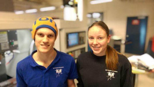 professionalità tramandata scuola tecnica istituto skf rassegna stampa svedese assosvezia